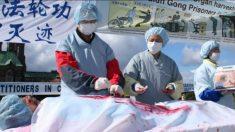 Prisioneiro de consciência chinês é morto durante extração forçada de órgãos, filha foge para os EUA