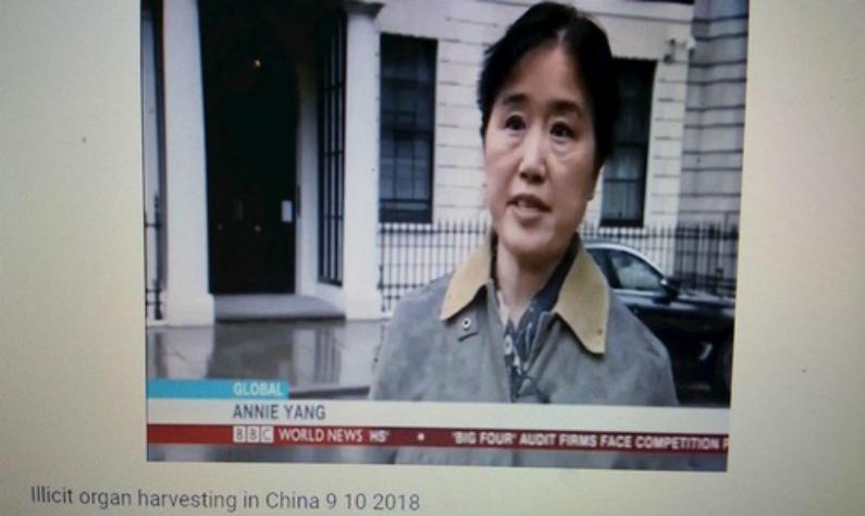 Praticante do Falun Gong Annie Yang fala sobre a perseguição pelo Partido Comunista da China (PCC) em frente à Embaixada da China em Londres
