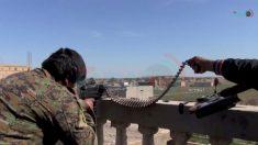 Centenas de combatentes do Estado Islâmico se rendem no leste da Síria