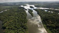 John Kerry diz que compromisso de Bolsonaro contra desmatamento ilegal é importante