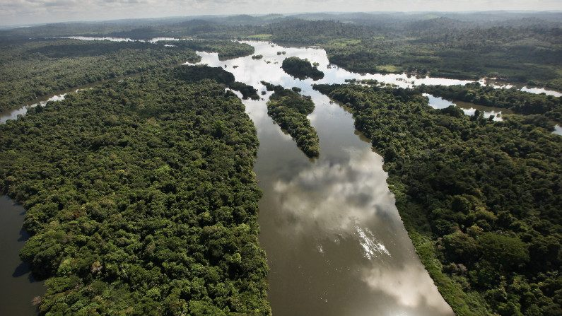 Salles analisará impacto antes de decidir sobre ferrovia biocêanica na Amazônia