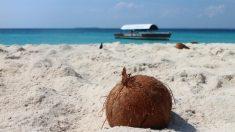 PL 353/19:  proposta altera CLT e impede parcelamento de férias