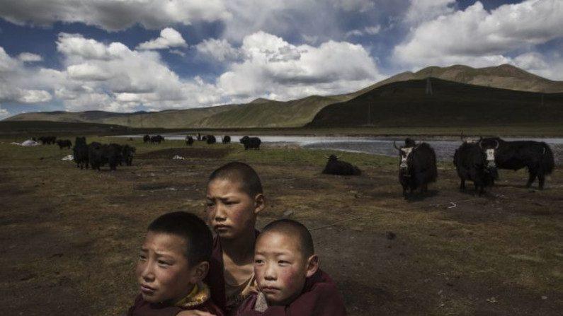 Revolução Cultural da China pode se repetir em breve no Tibete