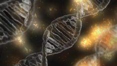 Ruanda planeja coletar DNA de 12 milhões de cidadãos no primeiro banco de dados nacional do mundo