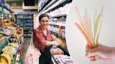 Designer chilena cria alternativa para produtos descartáveis de plástico utilizando algas