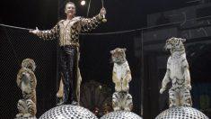 Prefeito bane circos na Rússia