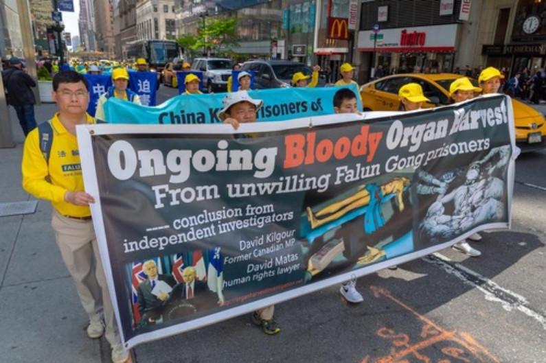Banners expondo a extração forçada de órgãos sancionada pelo PCC (Minghui.org)
