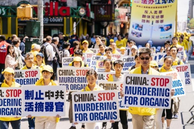 Cartazes pedem o fim da extração forçada de órgãos praticada pelo PCC (Minghui.org)