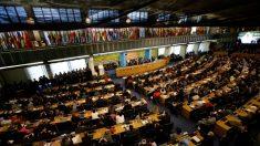 Papa Francisco pede nova autoridade mundial para fazer cumprir metas da ONU