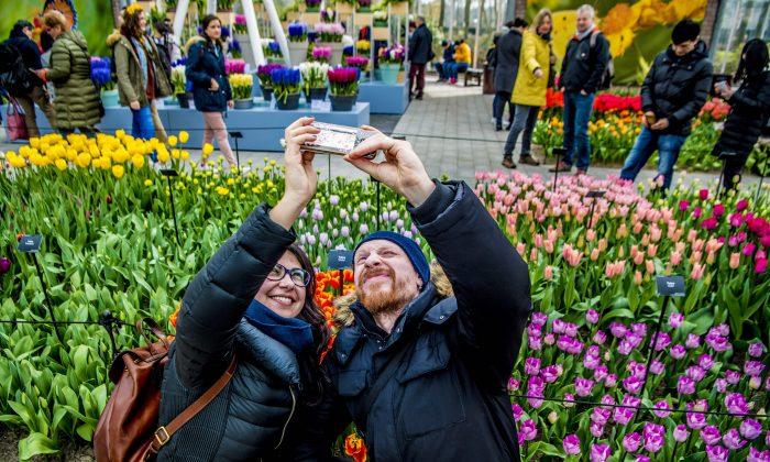 Holanda deixa de promover turismo para conter superlotação