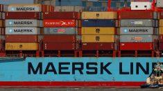 MSC e CMA CGM embarcam na plataforma blockchain de envio da Maersk