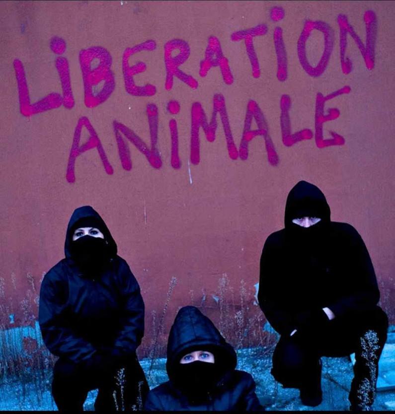 Ativistas radicais verdes aplicam os postulados filosóficosda Declaração Universal dos Direitos dos Animais (Reprodução)