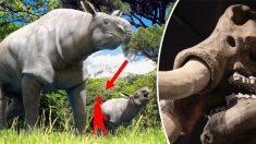 Cinco mamíferos pré-históricos gigantescos que vagaram pela Terra