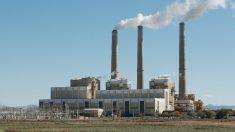 Estados e cidades processam Trump por desmantelar plano energético de Obama