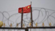 Projeto de lei uigur sobre direitos humanos desencadeia outra reação de Pequim