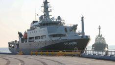 Navio da Marinha Australiana cria 'creche para cachorros' para animais vítimas dos incêndios florestais