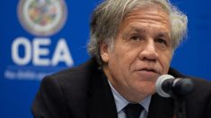 Secretário da OEA pede a Maduro que entregue à Colômbia ex-congressista fugitiva detida pelas FAES