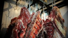 Wuhan detecta coronavírus em embalagens de carne bovina importada do Brasil