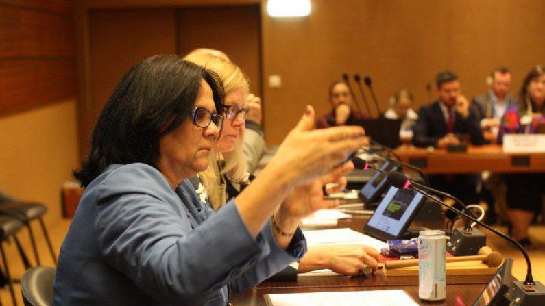 Brasil trabalha por maior presença da mulher na política, diz Damares