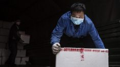 Autoridades chinesas autorizam apreensão de bens pessoais para combater crise de coronavírus