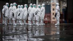 China reporta primeira gripe aviária H5N6 na fazenda de aves domésticas em Sichuan