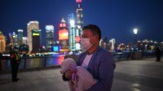 Segundo cão testa positivo para vírus do PCC