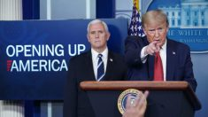 Trump anuncia que suspenderá a imigração temporariamente nos EUA