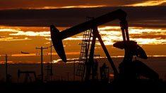 Trump diz que corte na produção de petróleo de Opep e aliados pode ser maior
