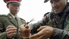 EUA estão prontos para mediar disputas de fronteira entre Índia e China