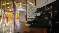 Bolívia autoriza vermífugo Ivermectina para tratamento contra Covid-19