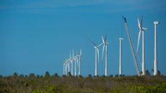 BNDES aprova financiamento de R$ 1,2 bi para projeto de energia eólica