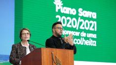 Plano Safra 2020/2021 contará com R$ 236,3 bilhões
