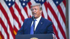 Trump diz que Brasil e Suécia têm dificuldades no combate à covid-19