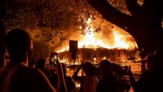 17 pessoas morrem em protestos e tumultos após morte de George Floyd nos EUA