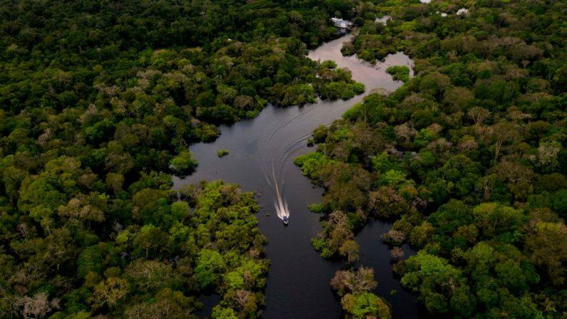 Bolsonaro alerta sobre mais uma campanha contra o Brasil por incêndios na Amazônia
