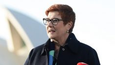 Austrália condena lei de segurança nacional de Hong Kong e manifesta preocupação