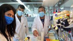 BioNTech crê em aval para distribuir vacina contra Covid-19 ainda em 2020