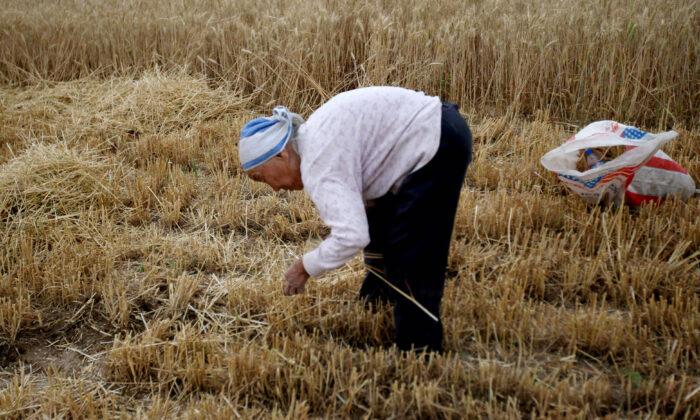 Pequim reprime vídeos de alimentação extrema enquanto país enfrenta escassez de alimentos