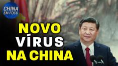 Novo vírus contagioso na China