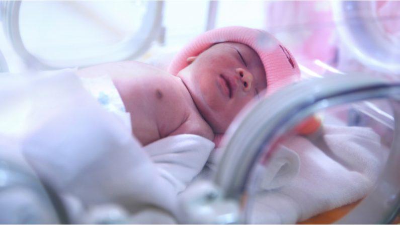 Pais com o coração partido despedem seu bebê enquanto desligam o suporte de vida, mas a menina decide ficar