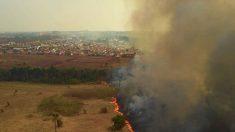 Peritos do MT identificam acidentes entre as causas do incêndio no Pantanal