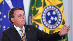 Bolsonaro promete revelar países que importam madeira ilegal da Amazônia