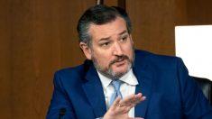 Ted Cruz viraliza após detonar CEO do Twitter: 'Você é especialista em fraude eleitoral?'