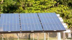 Governo federal traz planos para levar energia elétrica ao Amapá