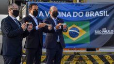 Doria usa bandeira do Brasil para receber a vachina
