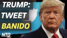 Trump; Tweet banido