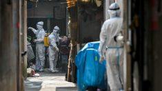Pequim novamente sugere que os EUA sejam culpados pela pandemia enquanto OMS investiga origem do vírus