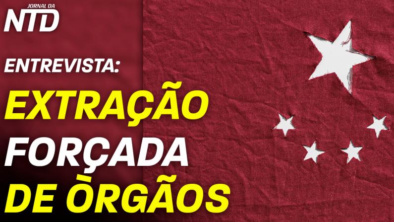 Entrevista com brasileiros premiados em concurso internacional contra extração forçada de órgãos