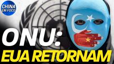 ONU: EUA retornam