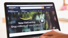 Amazon remove de sua plataforma livro que critica ideologia gênero